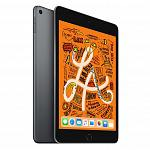 iPad mini 256Gb Space Gray