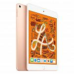 iPad mini 256Gb Gold
